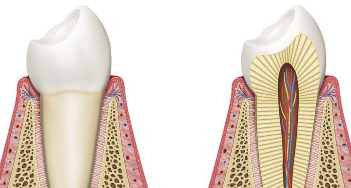 retención ortodoncia